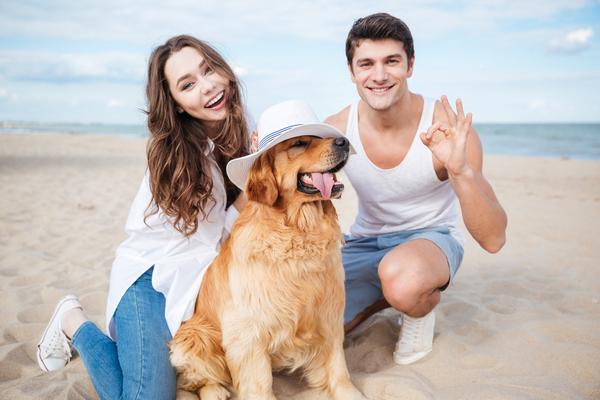 Pets and Vacation Rentals (1)